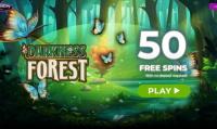 darkness-forest